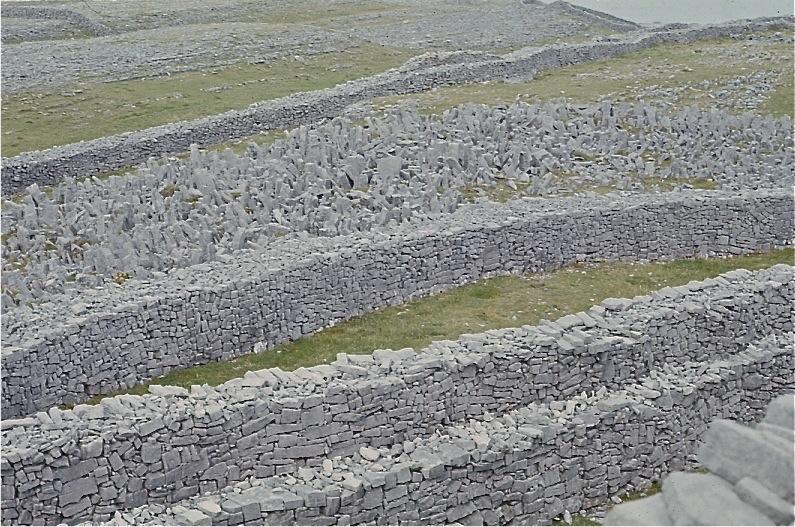 ドゥーンエンガスの砦とそれを囲む石の鹿角砦(ろっかくさい)/アラン島、アイルランド